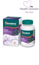 Boerhaavia (punarnava) Wellness