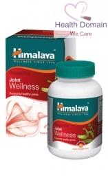 Boswellia (shallaki) Wellness