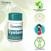Cystone 100 Tablets By Himalaya Herbals