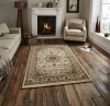 Regency 7896 Ivory Traditional Machine Made Rug - 100% Polypropylene